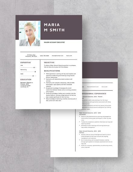 Major Account Executive Resume Download