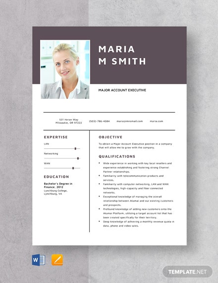 Major Account Executive Resume Template