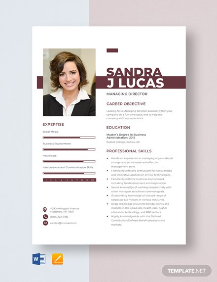 Managing Director Resume Template