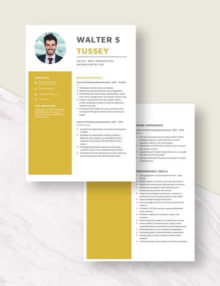 Sales And Marketing Representative Resume Download