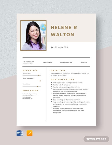 Sales Auditor Resume Template