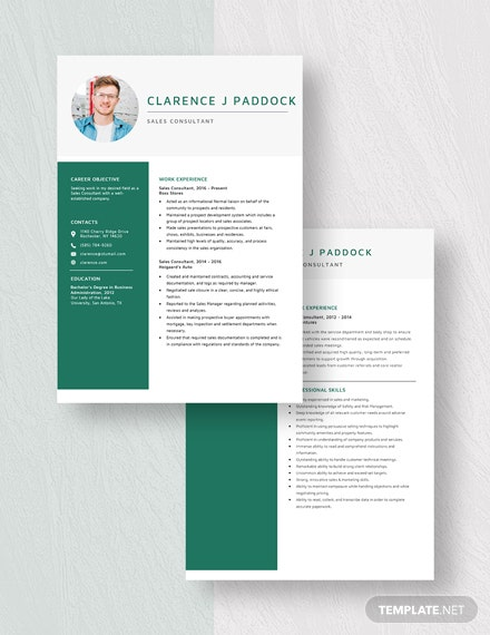Sales Consultant Resume Download