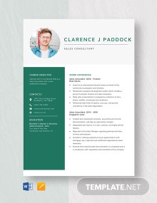 Sales Consultant Resume Template