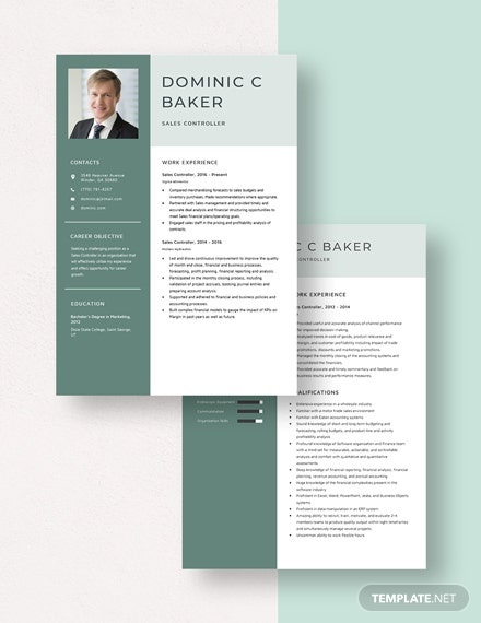 Sales Controller Resume Download