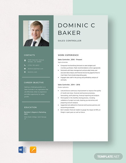 Sales Controller Resume Template