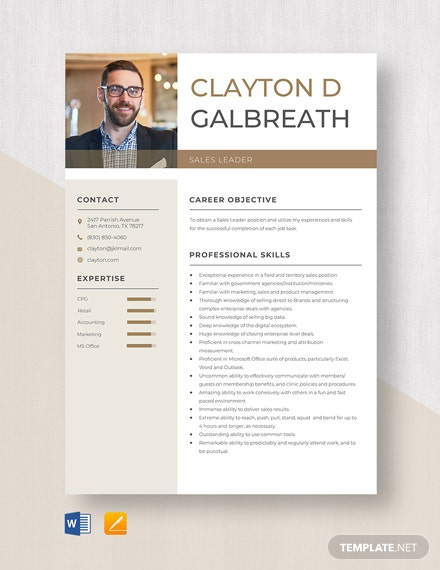 Sales Leader Resume Template