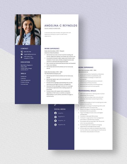 Sales Merchandiser Resume Download