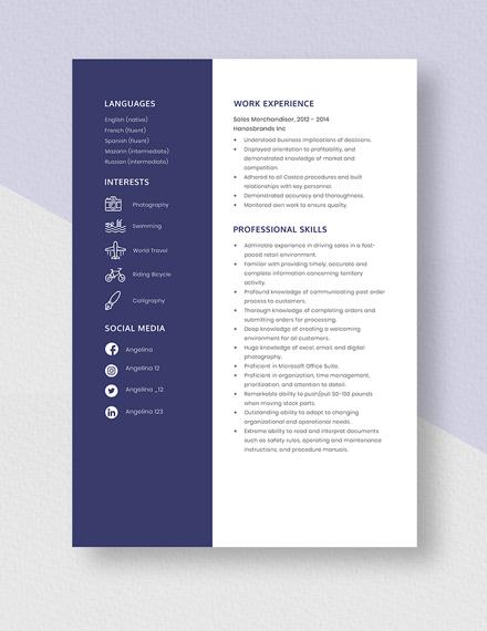 Sales Merchandiser Resume Template
