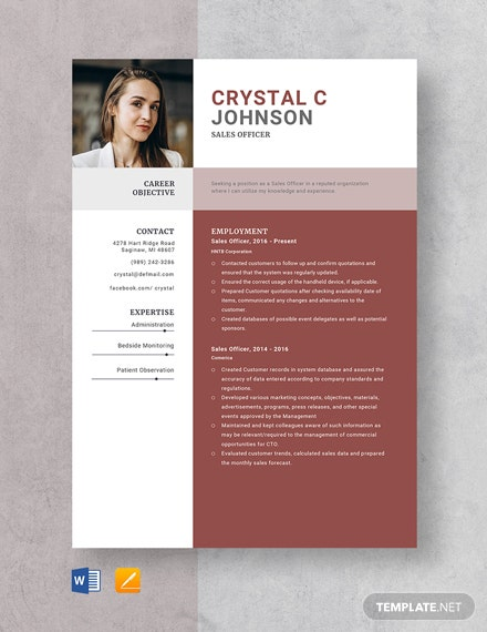 Sales Officer Resume Template