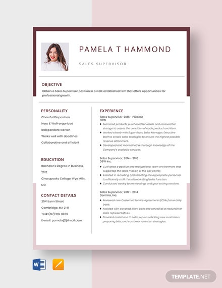 Sales Supervisor Resume Template