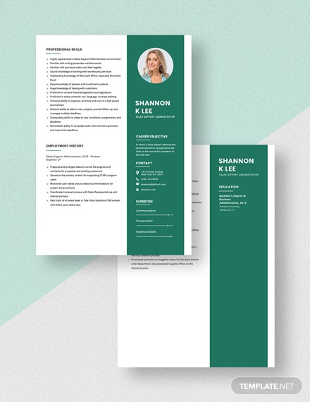 Sales Support Administrator Resume Download