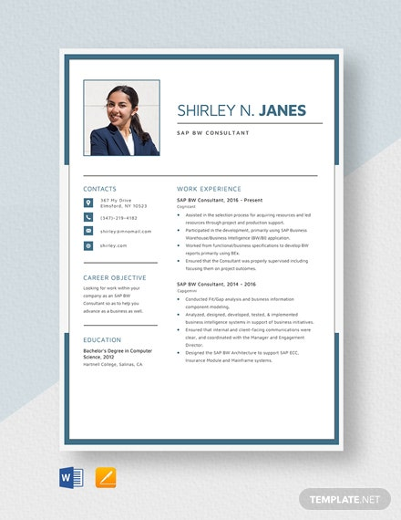 SAP BW Consultant Resume Template