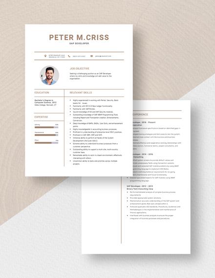 SAP Developer Resume Download