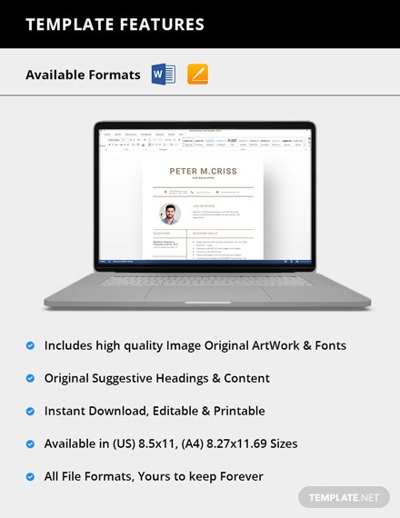 Simple SAP Developer Resume