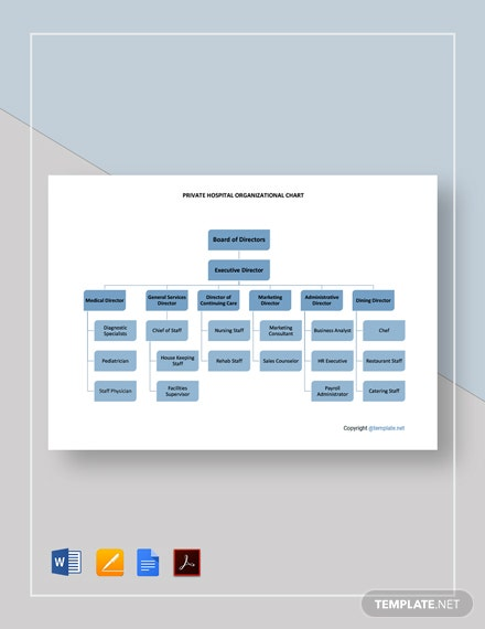 Free Private Hospital Organizational Chart Template