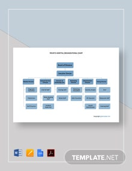 Free Private Hospital Organizational Chart Template