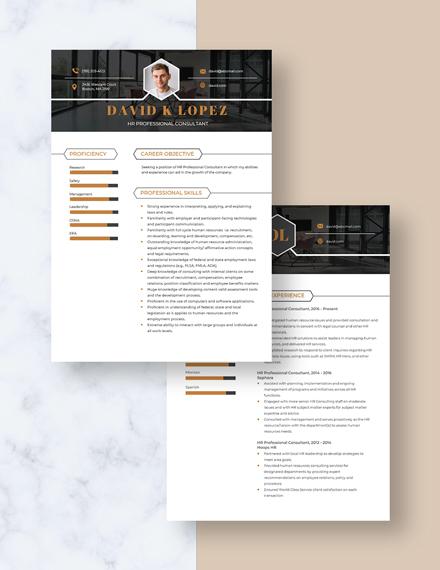 HR Professional Consultant Resume Download