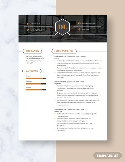 HR Professional Consultant Resume Template