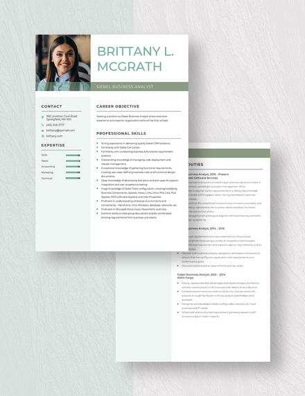 Siebel Business Analyst Resume Download