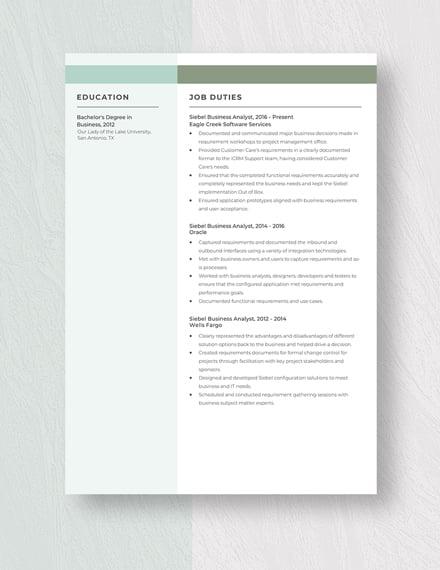 Siebel Business Analyst Resume Template