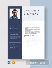 Siebel Consultant Resume Template