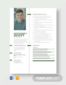 Household Assistant Resume Template