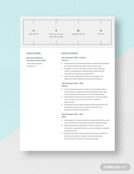 Job Developer Resume Template