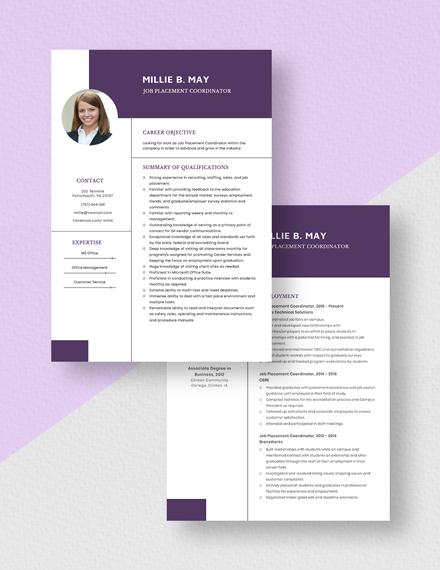 Job Placement Coordinator Resume Download
