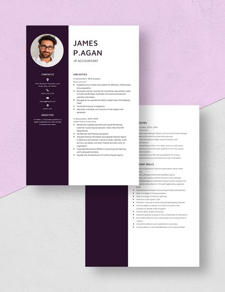 Jr Accountant Resume Download