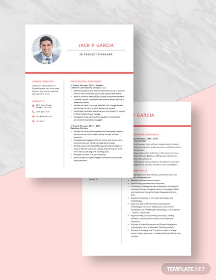 Jr Project Manager Resume Download