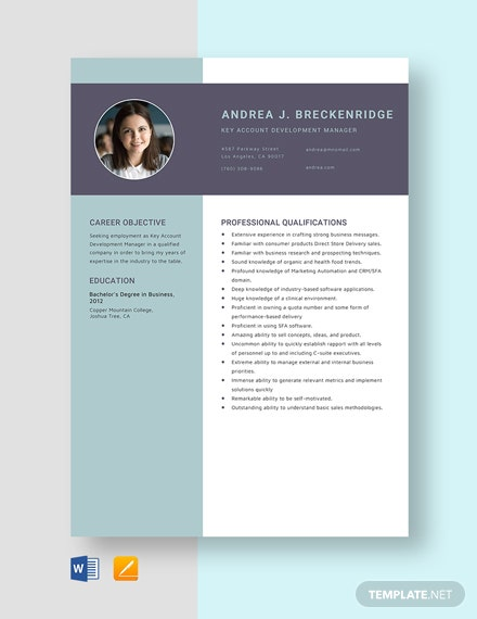 Key Account Development Manager Resume Template