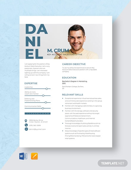 Key Account Sales Executive Resume Template