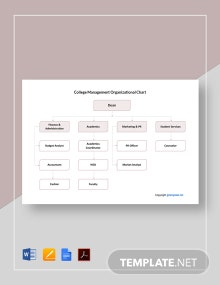 Free College Management Organizational Chart Template