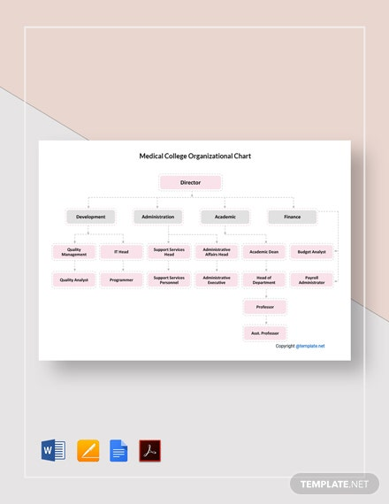 Free Medical College Organizational Chart Template