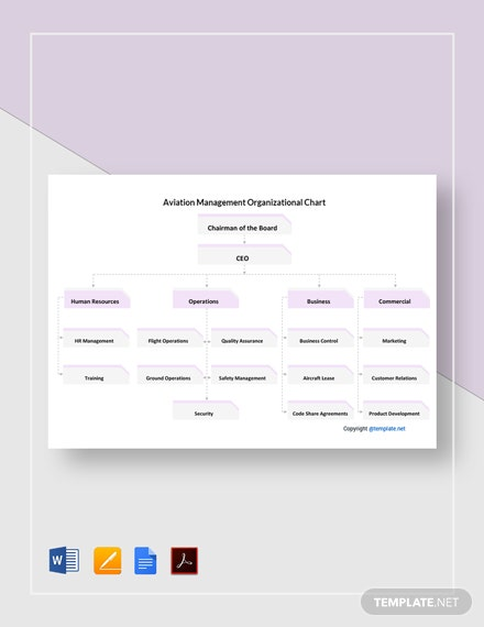 Free Aviation Management Organizational Chart Template