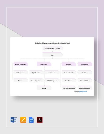 Free Aviation Management Organizational Chart Template