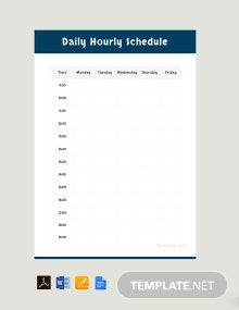 Daily Hourly Schedule Template