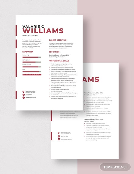Sales Accountant Resume Download
