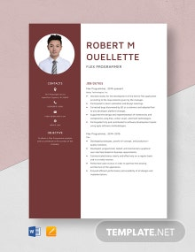 Flex Programmer Resume Template