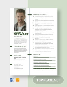 Service Officer Resume Template
