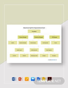 Manufacturing Firm Organizational Chart Template