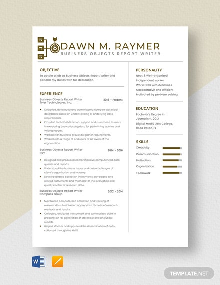 Business Objects Report Writer Resume Template