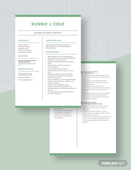 Business Account Executive Resume Download