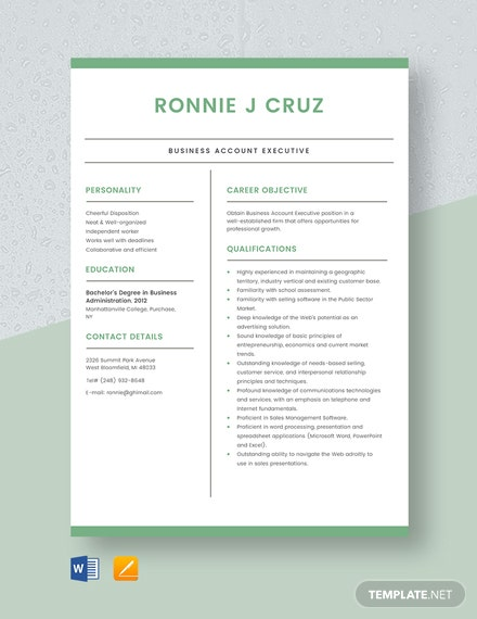 Business Account Executive Resume Template