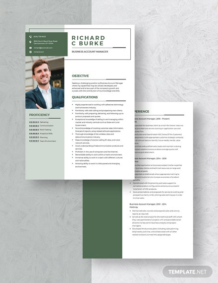 Business Account Manager Resume Download