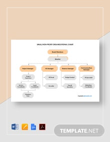 Small Non Profit Organizational Chart Template