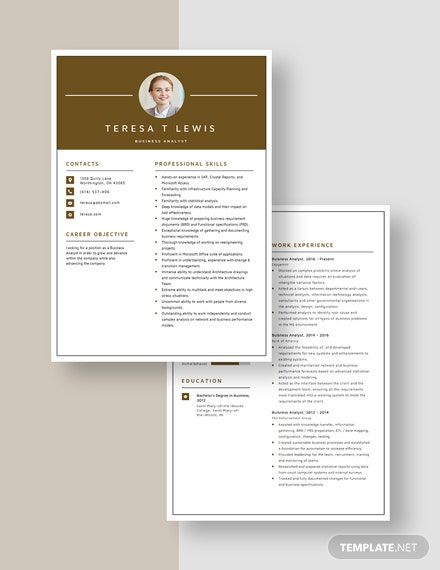 Business Analyst Resume Download
