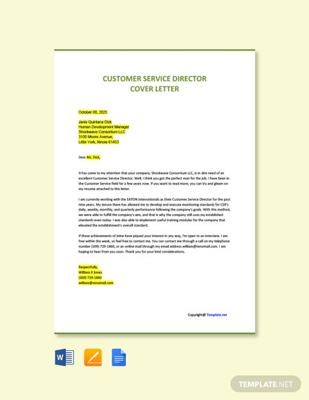 Free Customer Service Director Cover Letter Template