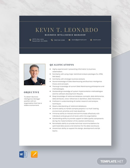 Business Intelligence Manager Resume Template