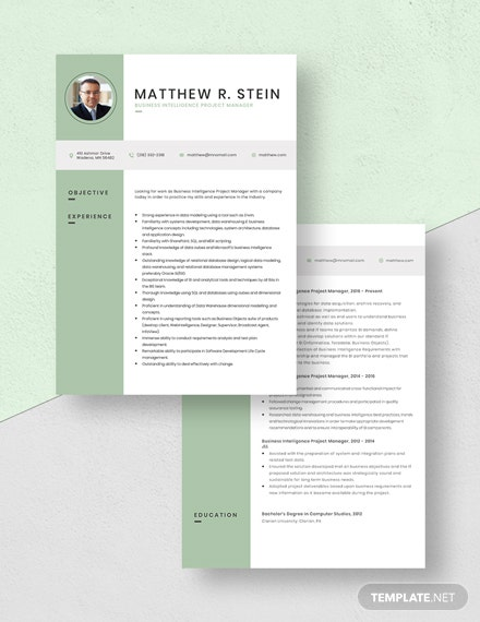 Business Intelligence Project Manager Resume Download